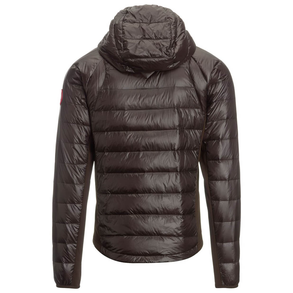 Image Result For Canada Goose Hybridge
