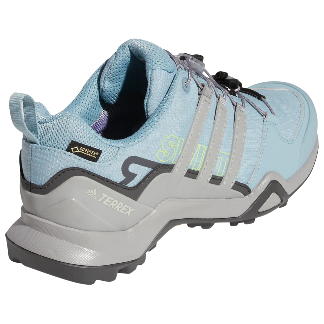 adidas Women's Terrex Swift R2 GTX Multisportschuhe Legend Earth Feather Grey Ash Grey S18 | 4 (UK)