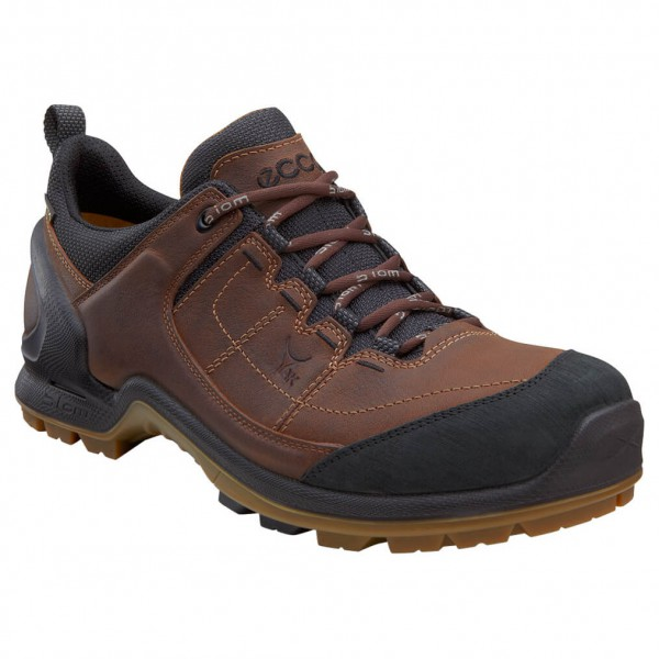 Ecco - Biom Terrain Akka II GTX - Hiking shoes