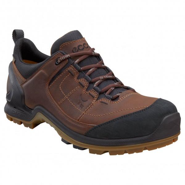 Ecco - Biom Terrain Akka II GTX - Walking boots