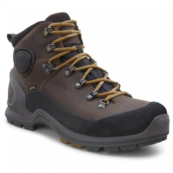 Ecco - Biom Terrain Akka II Mid GTX - Hiking shoes