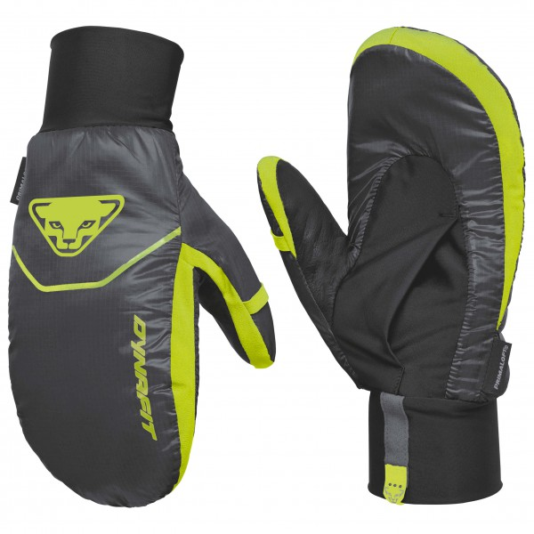 Dynafit - Borax Primaloft Gloves - Gants