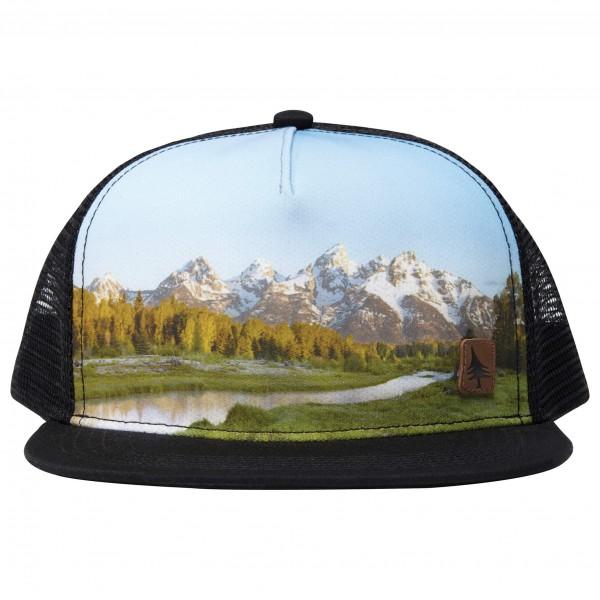 Hippy Tree - Cap Range - Cap