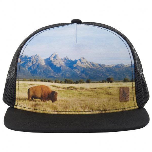 Hippy Tree - Rangeland Hat - Pet