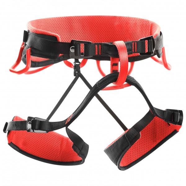 Syncro - Climbing harness