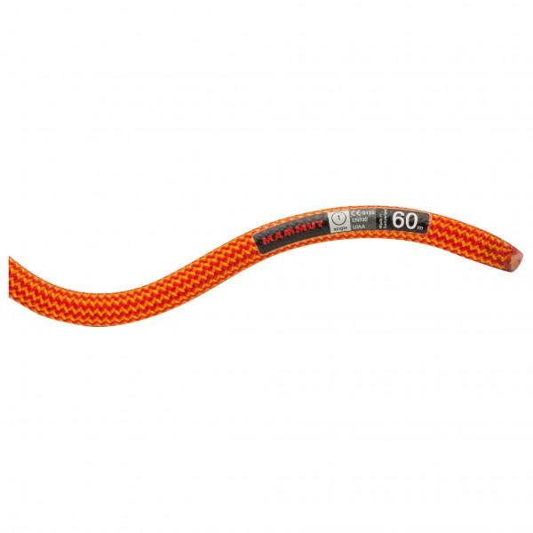 Mammut - 10.0 Galaxy Dry - Single rope