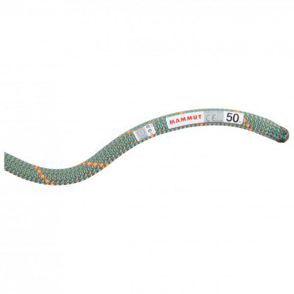 Mammut - 9.9 Crag Workhorse Dry Rope - Einfachseil