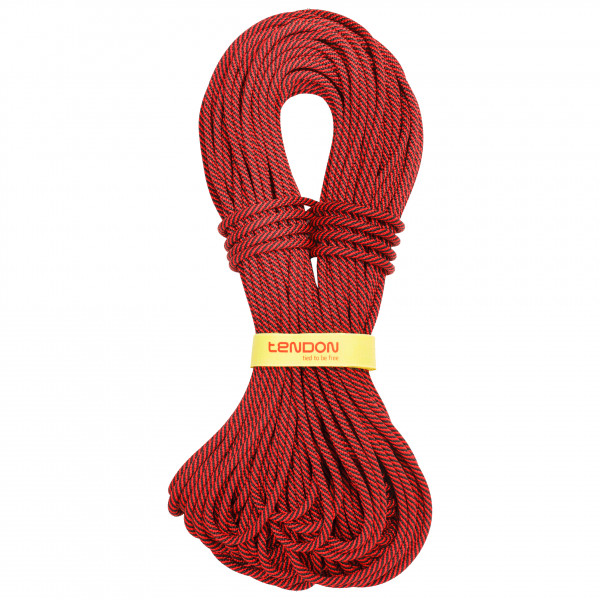 Tendon - Master 7,8 mm Shield - Half and twin rope