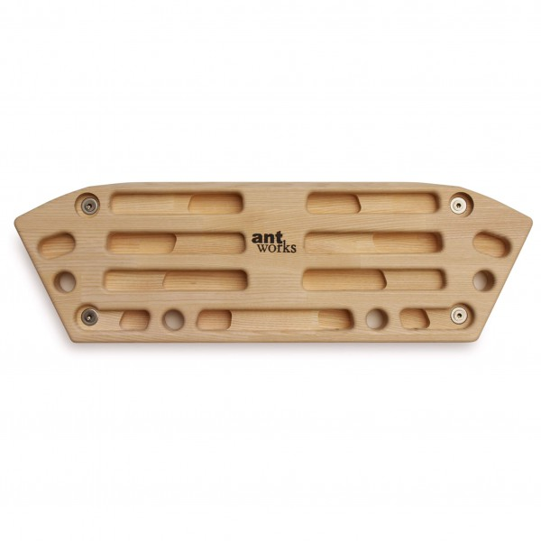 Antworks - Strong Ant III - Trainingsboard