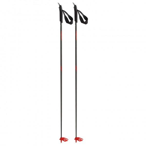 Dynafit - Dyna Evo - Ski poles