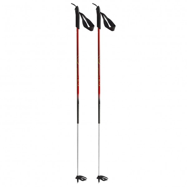 Dynafit - Nanga Parbat Pole - Bâtons de ski
