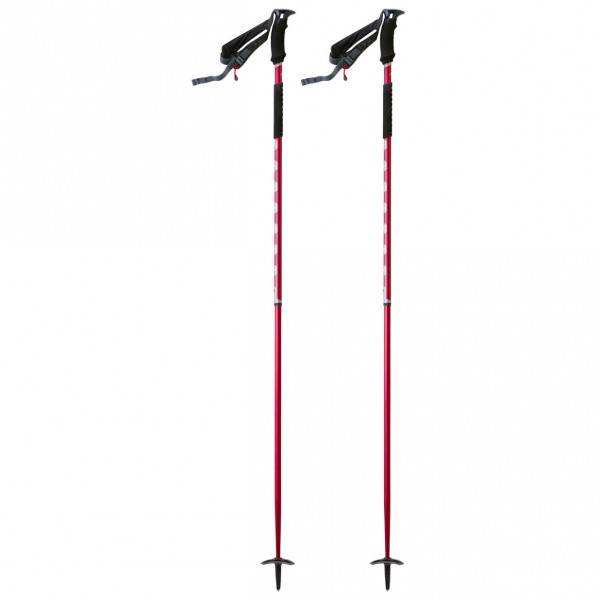 MSR - Flight 2 - Ski poles