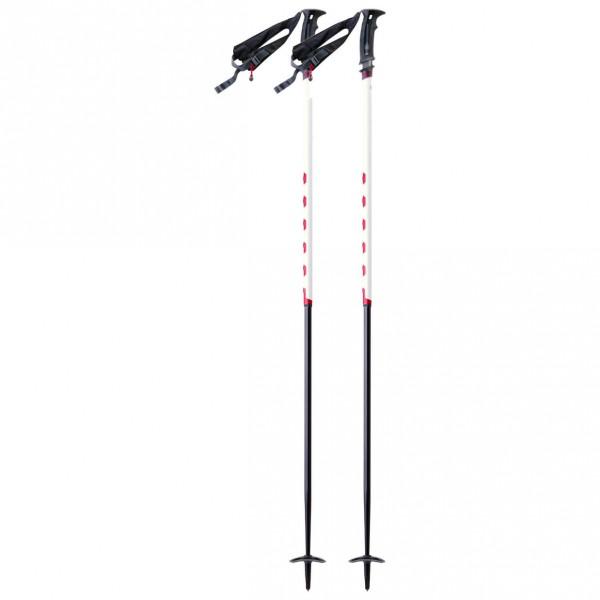 MSR - Deploy TR2 - Ski poles