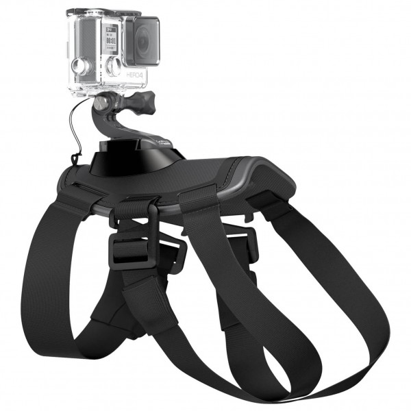 GoPro - Fetch (Dog Harness) - Fixation pour caméra