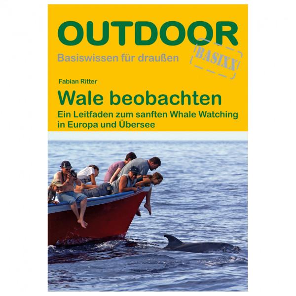 Conrad Stein Verlag - Wale beobachten