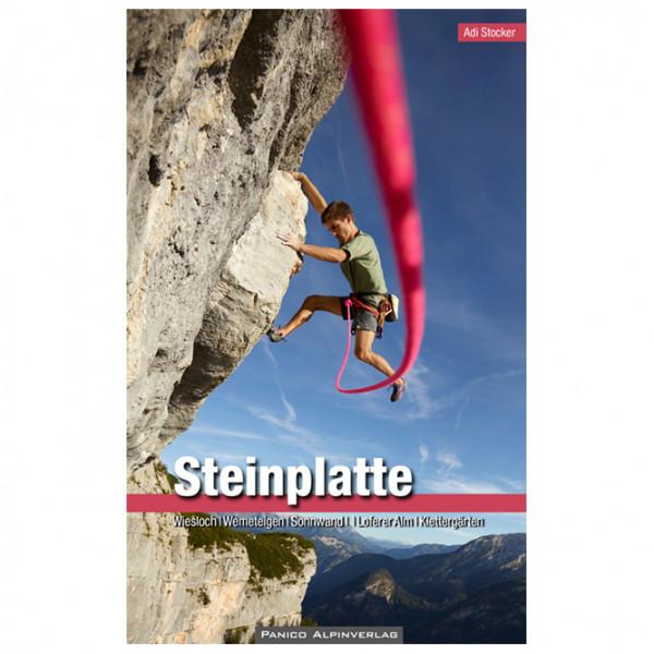 Panico Alpinverlag - Alpinkletterführer Steinplatte - Kiipeilyoppaat
