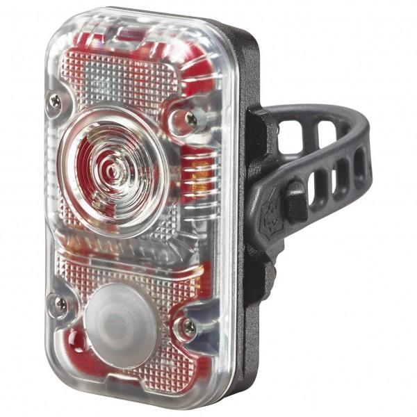 Lupine - Red light