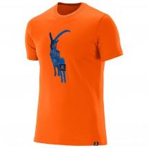 Salomon - Hiker S/S Cotton Tee - T-shirt