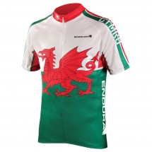 Endura - Coolmax Printed Wales Jersey II - Pyöräilypusero