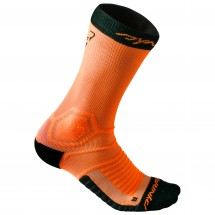 Dynafit - Ultra Cushion Sock - Juoksusukat