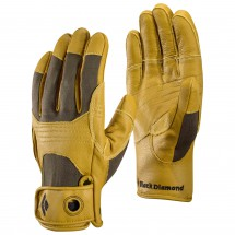 Black Diamond - Transition Glove