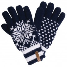 Alprausch - Parsenn - Gloves