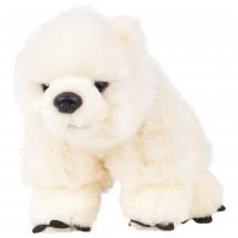Eisbär - Baby Eisbär