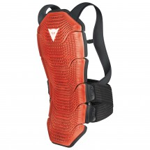 DAINESE - Manis Winter 49 - Protection
