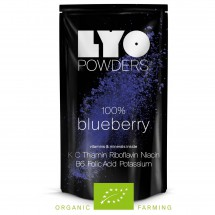 Lyo Food - Organic Blueberry Powder