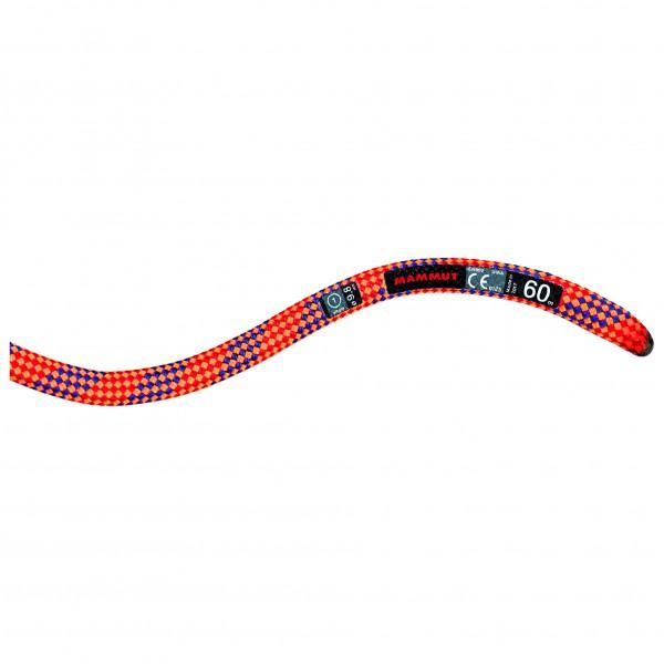 Mammut - 9.8 Eternity Dry - Einfachseil Gr 40 m;50 m;60 m;70 m rot/rosa;blau/grau/weiß